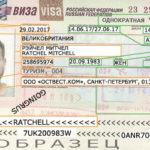 Как получить визу в Россию дешево самому. Полная пошаговая инструкция